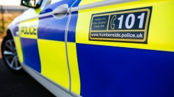 Theft of Wood from Building Site